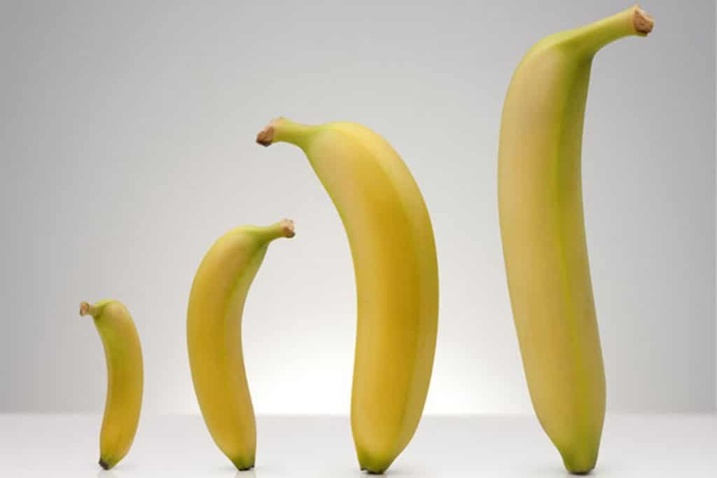 different size bananas